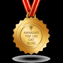 top 100 cat blog