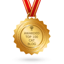 top 100 cat blog