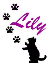 LilySignature