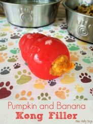 pumpkin filled kong dog treat