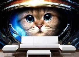 cat-in-space-mural