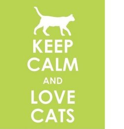 sign says keep calm and love cats