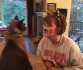 siamese cat and woman with cat ears and cat make-up