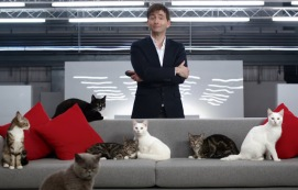 actor david tennant narrates a film for nervous cats