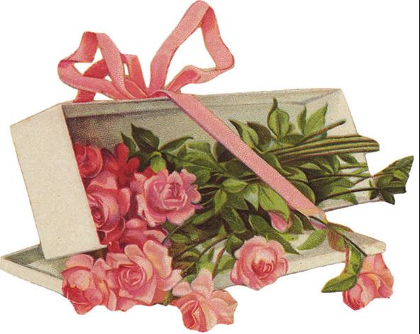 box of pink roses with a pink ribbon