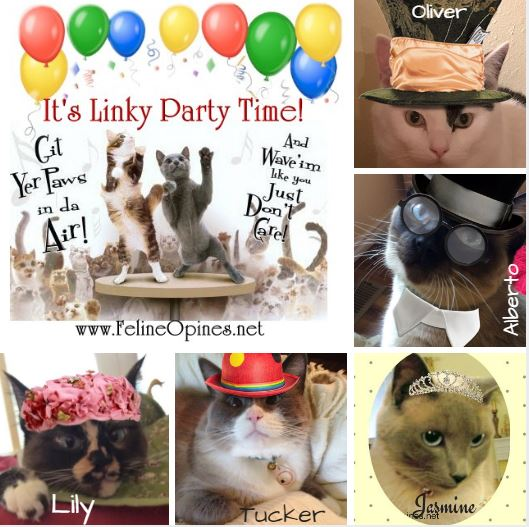 Five cats in hats celebrating Linky Party