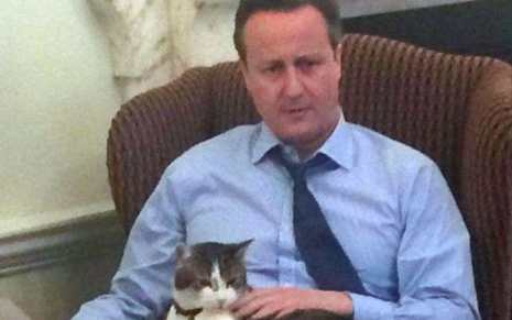 former prime minister David Cameron and Larry the 10 downing street cat