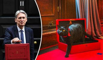 black cheif mouser at the british treasuary