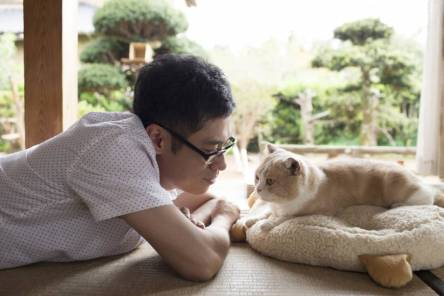 p13-schilling-cat-a-20170330-870x580
