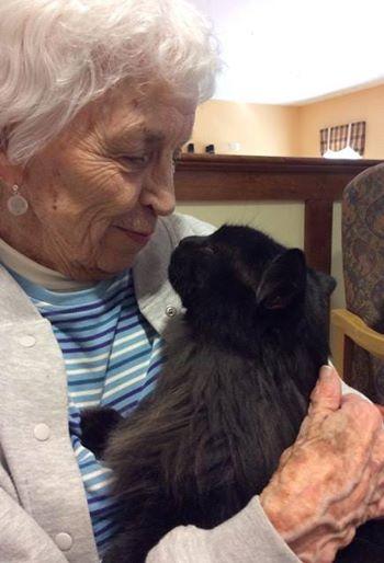 elderly woman holding a black cat