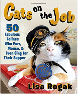 CatsOnJobBook