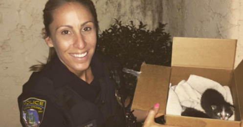 policewoman rescues kittens and cats