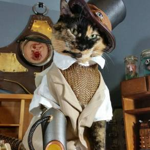 calico cat in steampunk costume