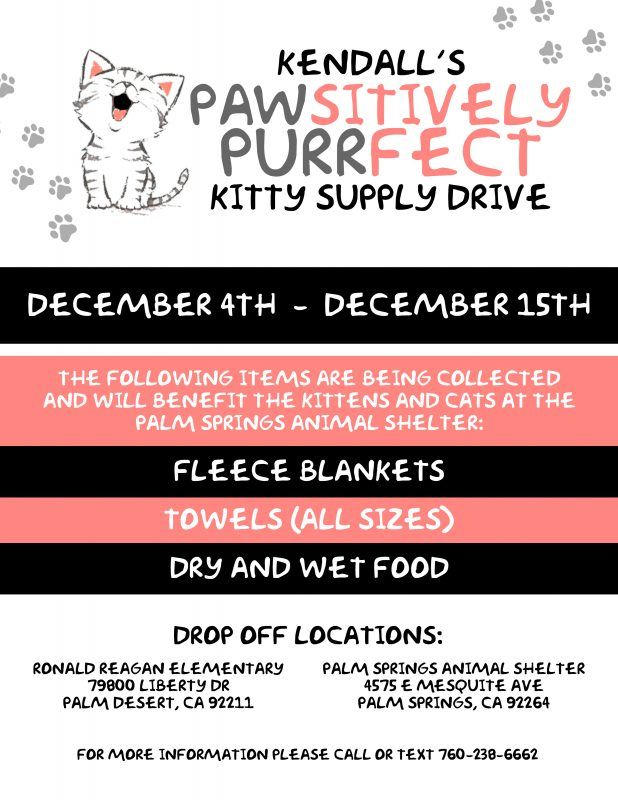Kendalls Pawsitively Purrfet kitty supply deive
