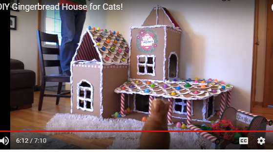 Christmas gingerbread playhouse for cats
