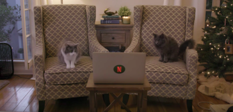 cats watching stranger things on netflix