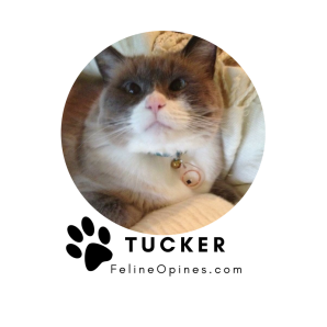 TuckieSig
