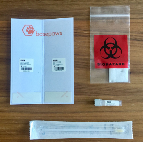cat dna kit basepaws