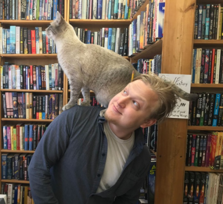 siamese tabby mix cat at twice sold tales bookstore