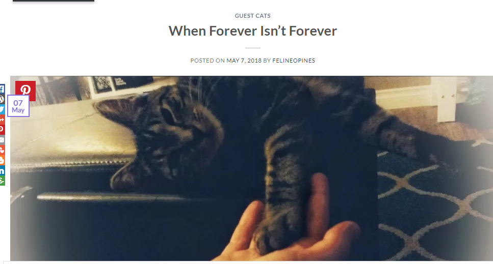 WhenForeverIsntForevber
