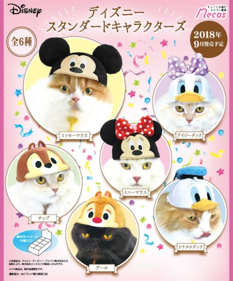 Disney hats for cats