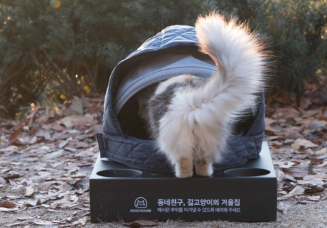 used hoods keep feral cats warm in the winter