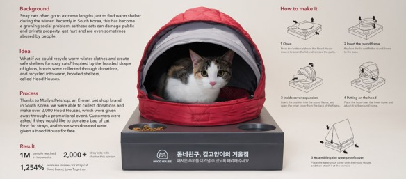 Hood Houses for stray Korean cats