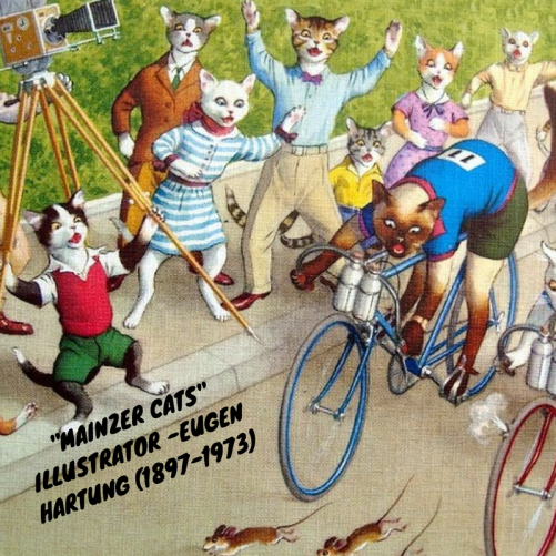 Mainzer cats in bike race