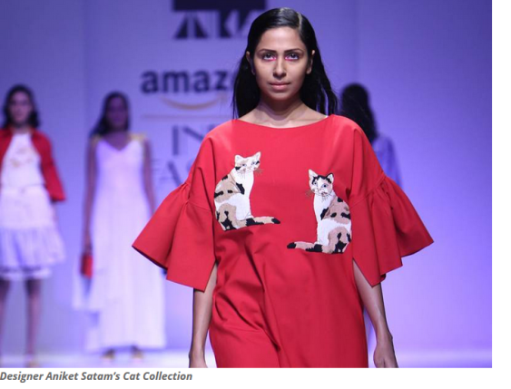 Unusual Cat Breeds Around The World Feline Opines