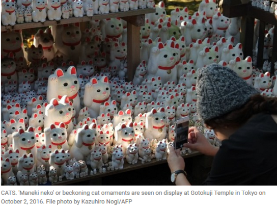 Tokyo lucky cat temple