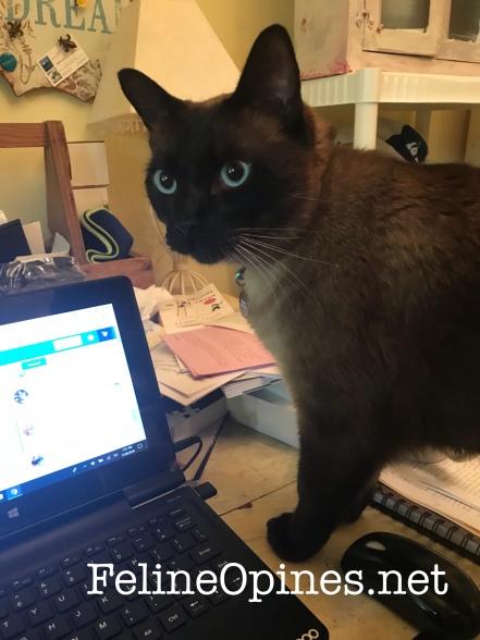 Al_computer