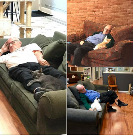man naps with cats at shelter