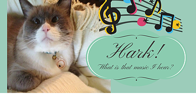 Siamese cat listens to music