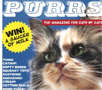 magazine by cats for cats
