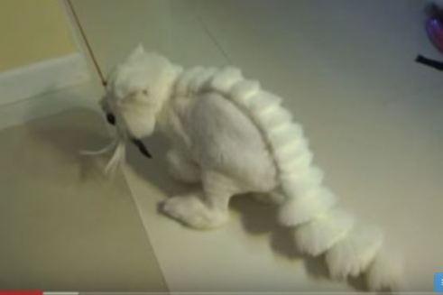 dino cat cat grooming trend