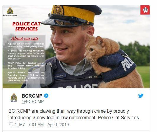 PoliceCat