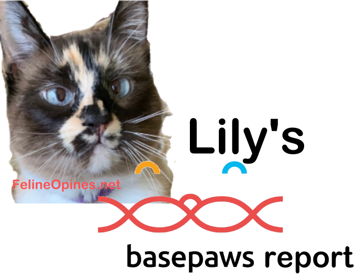 cat basepaws dna results