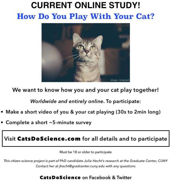 playWithYourCat